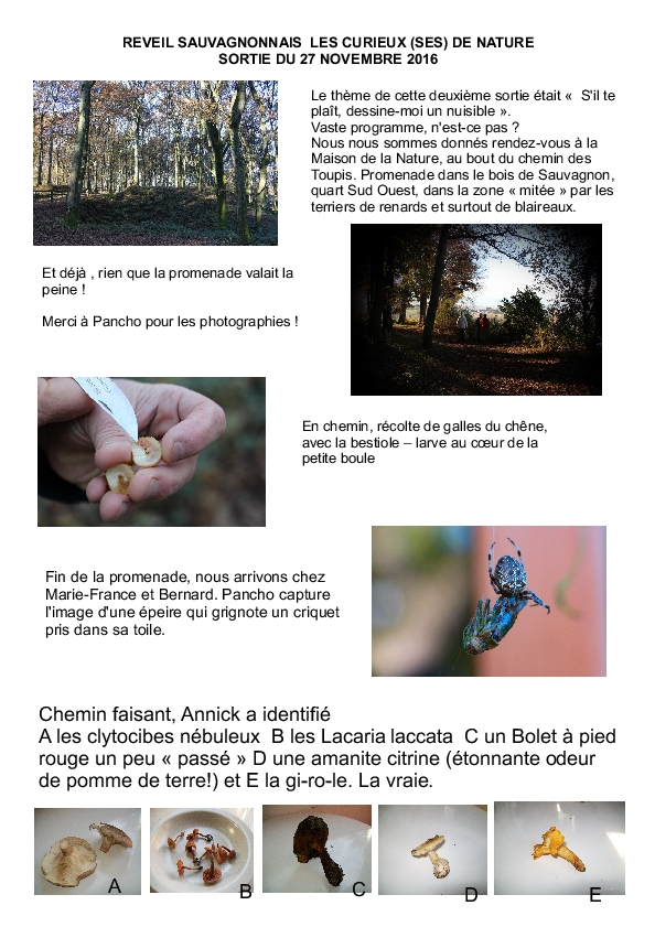les-curieux-de-nature-27-11-16_1